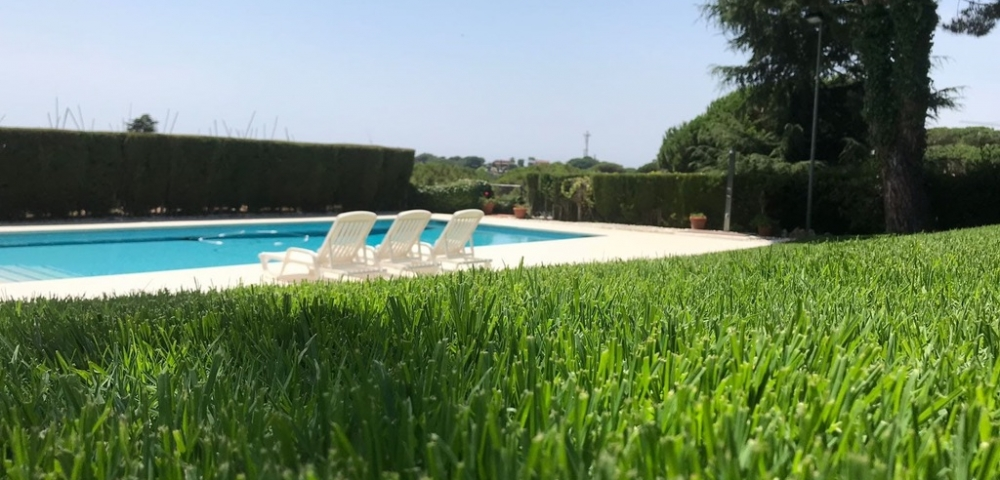 Village Green Europe A Turf Grass Like No Other